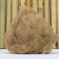 Natural Camel Hair Fibre From Alashan China